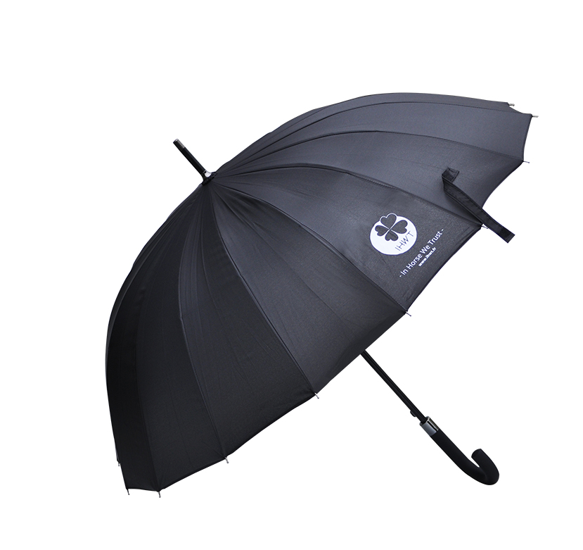 Parapluie IHWT umbrella
