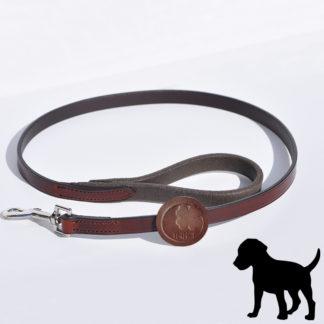Laisse pour chien IHWT dog leash